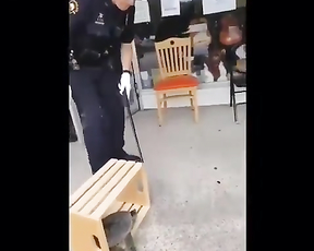 Hahahah Police officer scared by turtle ninja.