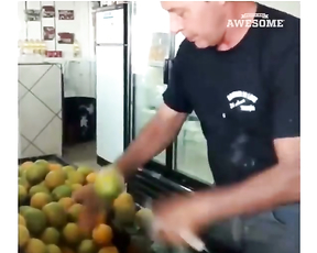Fast fruits and fud cutting compilation.