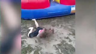 Funny baby's and kids compilation. Lol