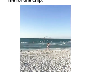 Seagulls attack her.