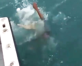 When you try to trow castnet first time. Lol