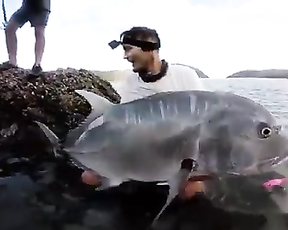 thats a realy big fish.