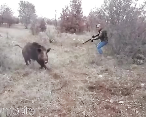 Extreme wild boar hunting from Turkey.