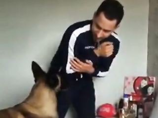 Dog don't allow baby to get hurt.