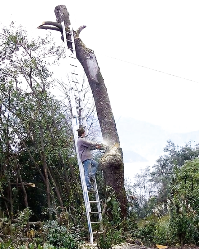 9 pictures Proving Why Women Live Longer Than Men.