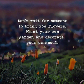 Dont wait for someone to bring you flowers...