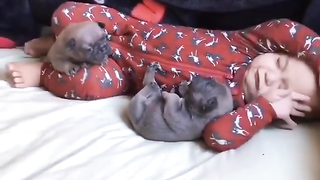 Cutest moment when baby sleeps with puppies.