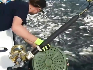 That's the best way to do fishing.