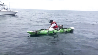 Fishing, man vs shark. Funny video.