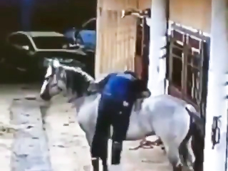 I bet he could have found a step somewhere in the stable. Don't do this to yourself.