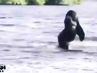 Oh, the water is so cold!