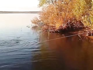Big catfish on spinning from the shore.