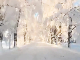Such a winter fairy tale