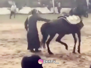Dance with me.Never stay behind a horse!!!!