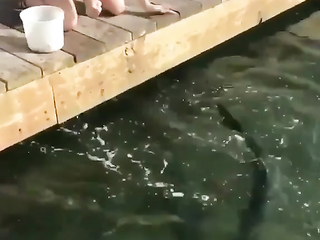 The fish appreciated the quality and price of the feed
