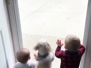 I saw 3 babies waiting for their big brother. LOL